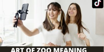 Art of the Zoo TikTok Meaning USA