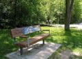 Memorial Bench in a Park